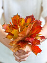 Bouquet of autumn leaves in woman hand Stock Image