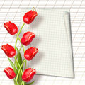 Bouquet of beautiful red tulips with greeting on paper white background Stock Image