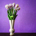 Bouquet of beautiful tulips flowers in vase on table in front purple wall Stock Photography