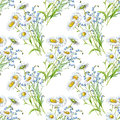 Bouquet blue flower with chamomile watercolor seamless pattern Royalty Free Stock Photo