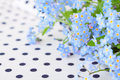 Bouquet of blue forget me not on white fabric in black polka dot Stock Images