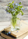 Bouquet of blue wild forget-me-not flowers. Royalty Free Stock Photo