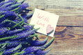 Bouquet of blue wild summer flowers,one decorative heart and the white card with the inscription With love
