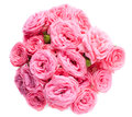 Bouquet of bright pink roses isolated fresh on a white background Stock Photography