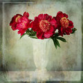 Bouquet of burgundy peonies with vintage texture