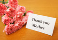 Bouquet of carnation and gift card Stock Image