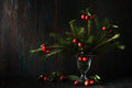 Bouquet of a Christmas tree Royalty Free Stock Photo