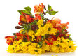 Bouquet Of Chrysanthemums And ...