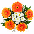 Bouquet of chrysanthemums and gerberas white orange isolated on white background Royalty Free Stock Images