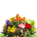 Bouquet of colorful spring flowers tulip ranunculus hyacinth daisy anemone Stock Photography