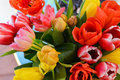 Bouquet of colorful tulips Royalty Free Stock Photo