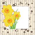 Bouquet of daffodils, greeting card Stock Photos