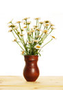Bouquet of daisies in a jug the isolated over white Stock Photos