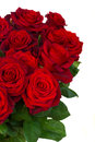 Bouquet of dark red roses in vase close up isolated on white background Royalty Free Stock Photos