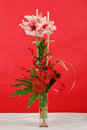 Bouquet de fleur rose de lis sur le rouge Photos stock