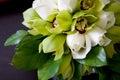 Bouquet de mariage des orchidées Photographie stock libre de droits