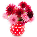 Bouquet des dahlias Photo libre de droits