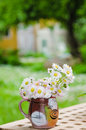 Bouquet des marguerites Photographie stock