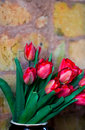 Bouquet des tulipes Photographie stock
