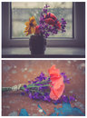 Bouquet from different kind of flower. Royalty Free Stock Photo
