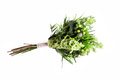 Bouquet from different white seasonal flower and green Royalty Free Stock Photo