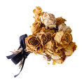 A bouquet of dried roses on  white background. Royalty Free Stock Photo