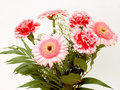 Bouquet of flowers 15 Stock Photo
