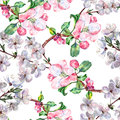 Bouquet flowers apple with flowers cherry seamless pattern