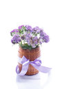 Bouquet of flowers with blue phacelia on a white background Royalty Free Stock Photography