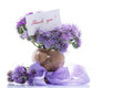 Bouquet of flowers with blue phacelia on a white background Royalty Free Stock Photo