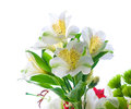Bouquet of flowers on a white background Royalty Free Stock Photos