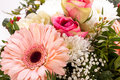 Bouquet of fresh pink and white flowers with a gerbera daisy dahlia roses in a close up view as a background for celebrating Stock Image