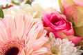 Bouquet of fresh pink and white flowers with a gerbera daisy dahlia roses in a close up view as a background for celebrating Stock Photography
