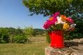 Bouquet garden flowers Royalty Free Stock Photo