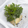 Bouquet Garni Royalty Free Stock Photography