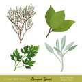 Bouquet Garni Herb Blend Stock Photography