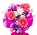 Bouquet with gerbera and chrysanthemum Royalty Free Stock Photos