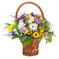 Bouquet from gerbera flowers isolated on white background in wicker gift basket Stock Photos