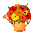 Bouquet of gerbera flowers in watering can vector illustration orange with colorful daisy Stock Photo
