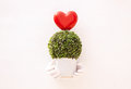 Bouquet of green leaf and heart Royalty Free Stock Photo