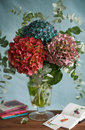 Bouquet of hydrangeas Royalty Free Stock Photography