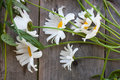 A bouquet of large daisies on old wooden table Royalty Free Stock Photo
