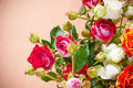 Bouquet of multicolored roses Royalty Free Stock Photos