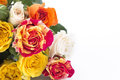 Bouquet of Multicolored Roses with Copy Space