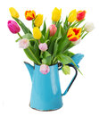 Bouquet of multicolored   tulip flowers in blue Royalty Free Stock Photo
