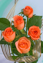 Bouquet of orange roses Stock Images