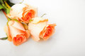 Bouquet of orange roses Royalty Free Stock Images