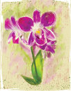 Bouquet of orchids aquarelle picture a Stock Photos