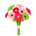 Bouquet of pink and green gerbera flowers. Vector illustration. Royalty Free Stock Photo