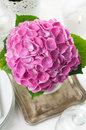 Bouquet pink hydrangeas vintage cutlery festive table closeup Royalty Free Stock Image